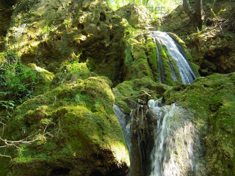 Екскурзия до Кръстова гора и Бачковски манастир снимка 3